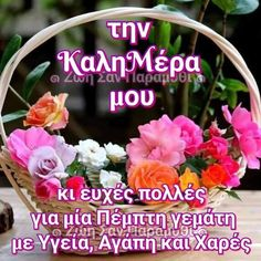 Beautiful Pink Roses, Happy Day, Good Morning, Floral Wreath, Gifts, Buen Dia, Floral Crown, Presents, Bonjour