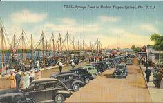 vintage postcard Tarpon Springs Florida
