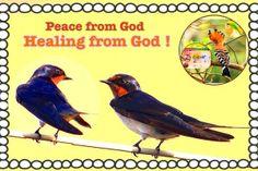 New slideshow: Jesus , show me your face 25/2/2014