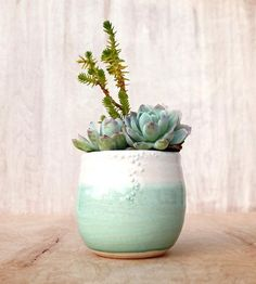 Little Minty Fresh Stoneware Planter by Unurth