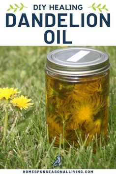 Making Dandelion Oil for Arthritis and Joint Pain Relief Homesteading - The Homestead Survival .Com joint pain relief essential oils Healing Herbs, Medicinal Plants, Natural Healing, Arthritis Remedies, Health Remedies, Arthritis Hands, Holistic Remedies, Headache Remedies, Natural Medicine