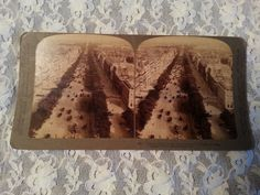 STEREOVIEW CARD-CHAMPS ELYSEES DRIVE PARIS FRANCE-1900-UNDERWOOD