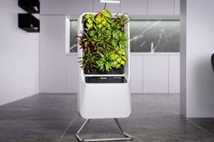 The Respira Smart Air-Purifying Garden Brings Nature Into Your Home! #respira #smartgarden #airpurifier #airpurifying #garden #homegarden #vegetablegarden #growyourownfood #gardener #organicgardening #urbangardening #urbangarden #homegrown #gardening Home Gadgets, Gadgets And Gizmos, Ceiling Storage, Smart Garden, Wash Hand Basin, Under Stairs, Ceiling Height, Air Purifier, Beams