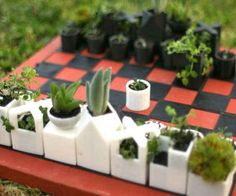 A chess set made of succulent planters.