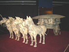 #magiaswiat #warszawa #zamek #podróż #zwiedzanie #europa  #blog #miasto #zjazd #kościół #zabytki #figury #park #łazienki #wilanów#muzeum #technika Lion Sculpture, Statue, Park, Blog, Europe, Parks, Blogging, Sculptures, Sculpture