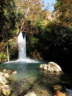 Banias Falls in the Golan Heights!