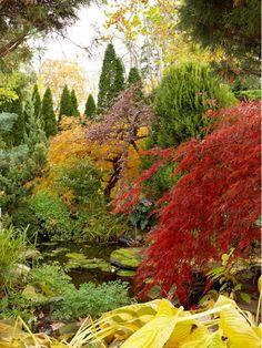 Fall landscape - Home and Garden Design Ideas
