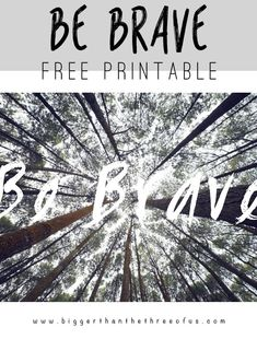 Free Printable for Your Gallery Walls - Perfect for a Little Boys Room!