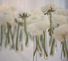 flores-suspensas03