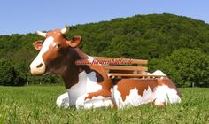 Kuh Bank Bunt, Cow, Animals, Google, Home And Garden, Animales, Dekoration, Animaux, Cattle