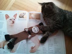 Ravelry: Zalja's test bookmark horse  Made using Happy Horse crochet pattern by Zabelina for LittleOwlsHut  #LittleOwlsHut, #Amigurumi, #CrochetPattern, #Zabelina