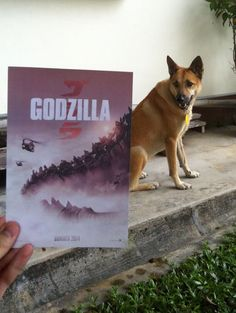 Dogzilla cometh. Squirrels runneth. #Godzilla