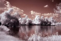 near-infrared-photo-18