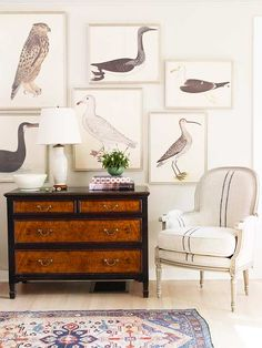 A Note from Nature -   A barely-GRAY wall color is the perfect backdrop for these waterfowl drawings. While a colorful hue would have added dimension, the gray background gently blends with the ornithological art for a museum-worthy display. For continuity, the soft-gray hue repeats through the space -- on the chair and lamp and even on the flooring, which has a gray wash. Touches of black on the dresser, in a few of the drawings, and on the chair's stripe ground the space.