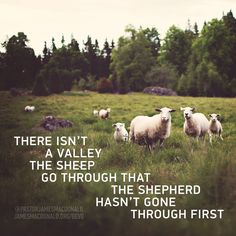 There isn't a valley the sheep go through that the Shepherd hasn't gone through first.