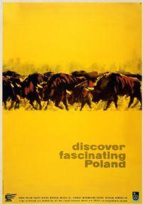 Discover Poland, Buffalos, Polish Travel Poster