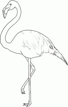 Free Flamingo coloring page