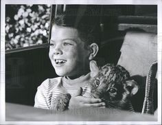 0 Erin Moran Child Actress with lion cub in Daktari 1968 Child Actresses, Child Actors, Erin Moran, Laverne & Shirley, Lion Cub, Happy Day, Comedians, Cubs, Musicians