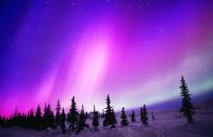 Aurora borealis near Cantwell, Alaska (© Fred Hirschmann/Science Faction/Corbis)
