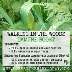 It's about health, nature and you! Share it to your Family, friends, neighbors to spread awareness, understanding on nature. Holistic Healing, Natural Healing, Reiki, Forest Bathing, Natural Health Remedies, Health And Wellbeing, Healthy Mind, Health Tips, Health Benefits
