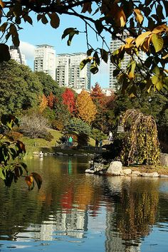 Jardin Japones en Buenos Aires, Argentina