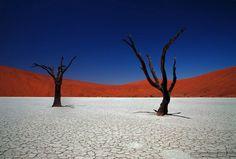 Глинянное плато Соссусфлей, находится в стране Намибия. Известно своими мертвыми деревьями и самыми большими в мире красными песчаными дюнами.