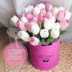 Успейте записаться на реснички к  8 марта! ❤️ Приглашаю на профессиональные процедуры по натуральным ресницам ✔️ Ламинирование ресниц и бровей ✔️ Ботокс ресниц ✔️ Окрашивание ресниц и бровей ✔️ Снятие нарощенных ресниц  Предварительная запись и консультации в личные сообщения Brows, Lashes, Lash Room, Spring Crafts, Pretty Flowers, Paper Flowers, Tulips, Cool Pictures, Manicure