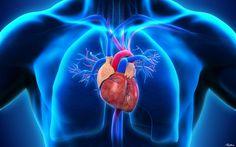 A heart wallpaper