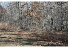 Block 3 Lot 13, Wappapello, MO  63966 - Pinned from www.coldwellbanker.com