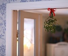 Our mistletoe
