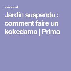 Jardin suspendu : comment faire un kokedama | Prima