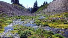 Mt Rainier National Park, Washington USA