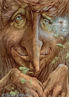 Ents... as told by JR Tolkien they are giant, tree-like sheperds of the forests...the old forests of which there are few left today. What a pity that the inquisitive nature of our minds brought us to destroy so much of what is good in this world. Ents would have been nice to know... Carol