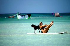 Paddle Board Yoga - Have the dog, need the board!!