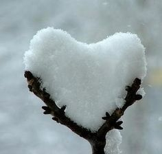 For all of you having snow days . . .  snow heart #snow #heart