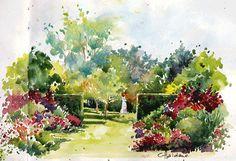 Chris Haldane - Breedenbroek Gardens (Urban Sketchers)