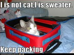 LOL my cat gets in the suitcase also...so cute