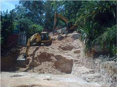 Chomp #Treeremoval & stump uprooting services