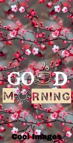 good morning wishes – good morning quotes ` good morning ` good morning quotes for him ` good morning quotes inspirational ` good morning wishes ` good morning beautiful ` good morning greetings ` good morning quotes funny Good Morning Friends Images, Good Morning Beautiful Pictures, Good Morning Images Flowers, Morning Quotes Images, Morning Greetings Quotes, Morning Pictures, Beautiful Images, Morning Messages, Good Morning Handsome