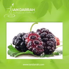 #Mulberries have the ability to regulate blood sugar levels. They contain flavonoids that help control sugar levels in the blood. Regular intake of Mulberries is also helpful in preventing blood sugar spikes in diabetic patients.