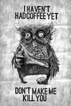 Coffee Owl Will Kill You