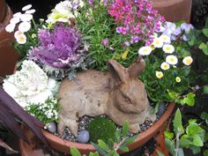 Just add the bunny and make this simple planting combination, so special! Just in time for Easter, love the bunny in with the plants!!
