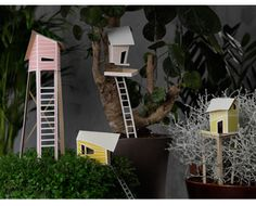 Cottage Town, by Nathan Wierink & Tineke Beunders (ontwerpduo.nl) - Change your potplant into a mini village with 'Cottage Town', and ordinary plants will be turned into huge trees or fields