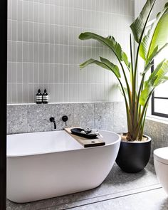 Shop Instagram - Tile Cloud Bathroom Renos, Laundry In Bathroom, Bathroom Layout, Bathroom Renovations, Small Bathroom, Modern Bathroom Tile, Estilo Tropical, Bathroom Design Inspiration, Bathroom Design Luxury