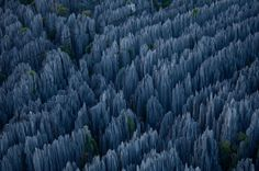 The Tsingy rise up to 70 meters from the ground of the 666 square kilometer region. The Stone Forest of Madagascar is definitely the place I want to see, but not before hands shaking with sloth and hailing to the king of Blah Blah Blah.