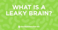 What on Earth is a Leaky Brain