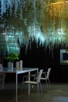 Patrick Nadeau. Installation created for Boffi. Corian domes covered with ' Tillandia usneuoides ', a plant native to the rain forest in the South-Eastern region of North America.
