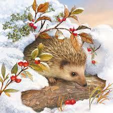 Image result for christmas hedgehog images