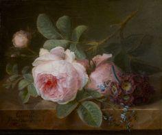 artist cornelis van spaendonck | afb: Cornelis van Spaendonck (Tilburg 1756 – 1839 Parijs), Koolroos ...