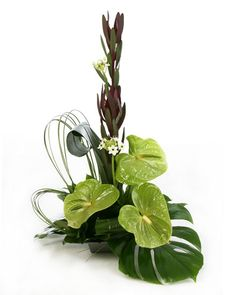 Modern Floral Arrangements | exotic frenzy modern from £ 20 this modern arrangement contains ...